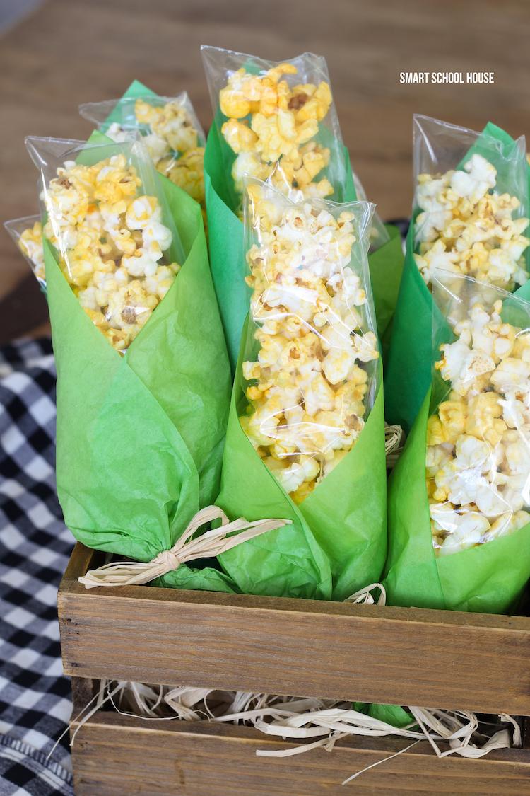 popcorn-treat-bags