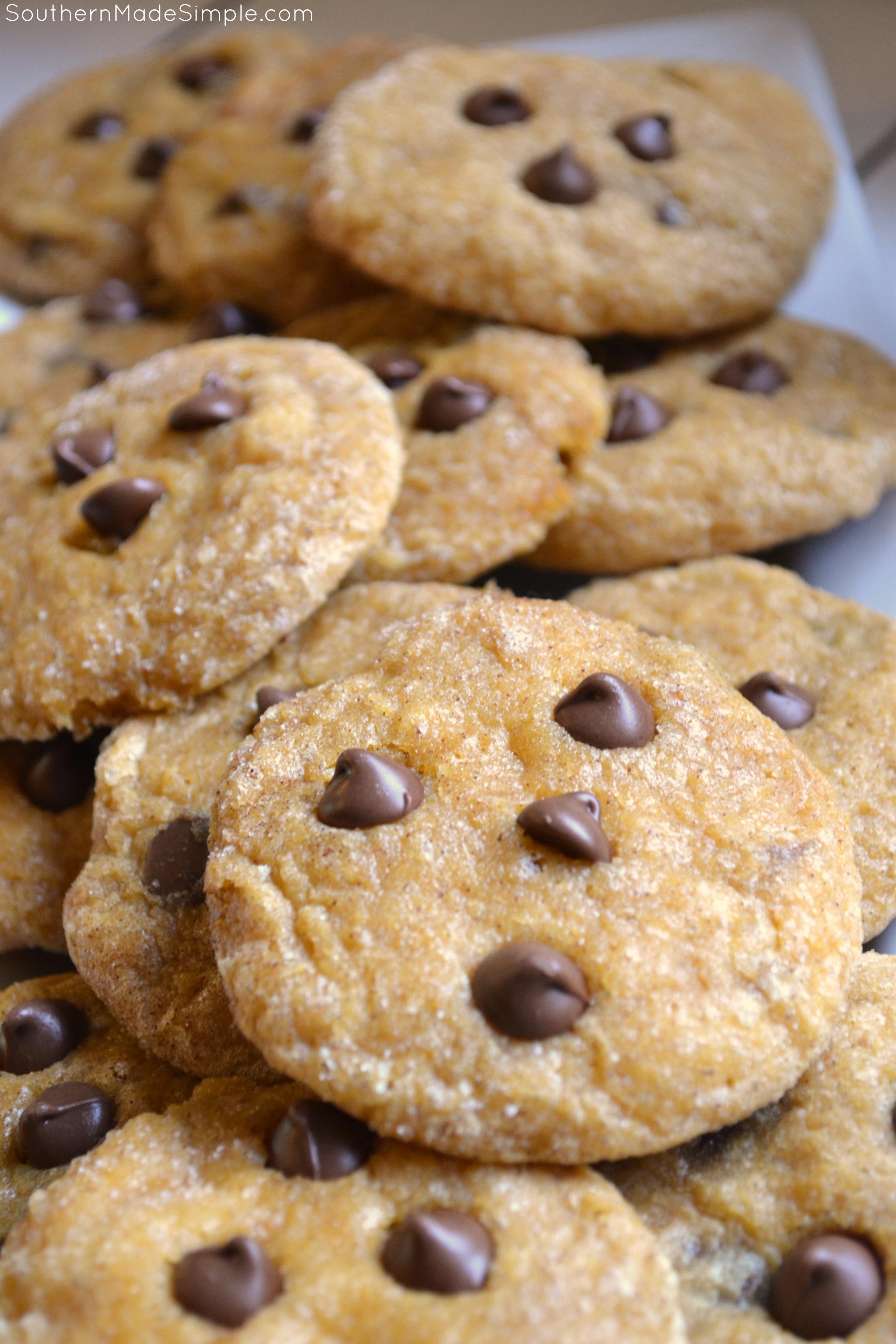 Chocolate Chip Pumpkin Snickerdoodle Cookies