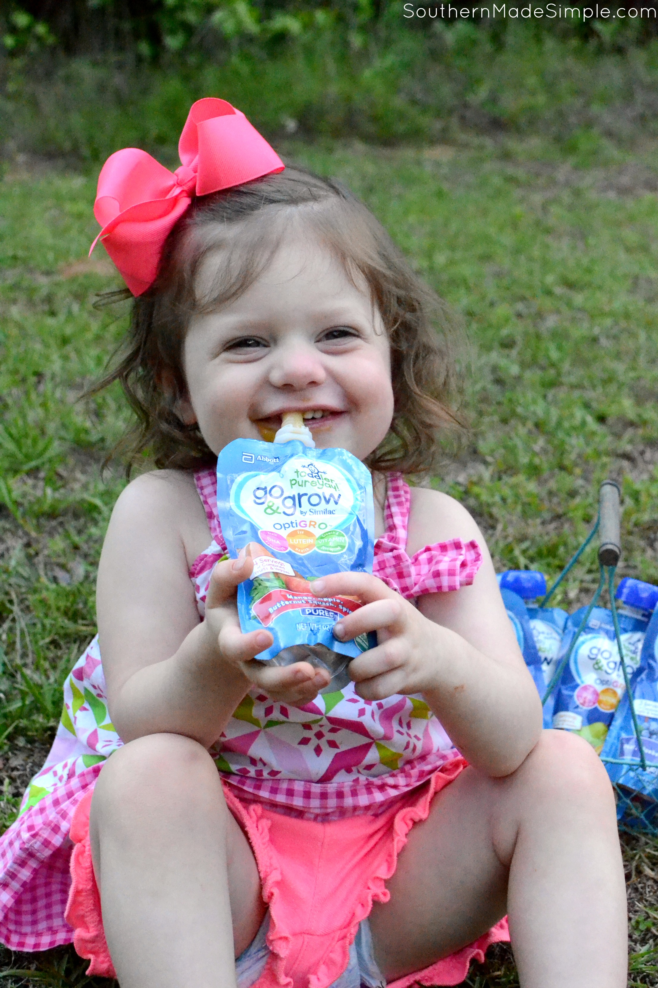 Do you have a toddler that's a picky eater? Do you struggle with getting them to eat their fruits and veggies? Packing those yummy nutrients into their diet is easy squeezy with Go and Grow Squeeze Pouches! #Go&GrowatWalmart #ad