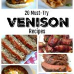 20 Must-Try Venison Recipes
