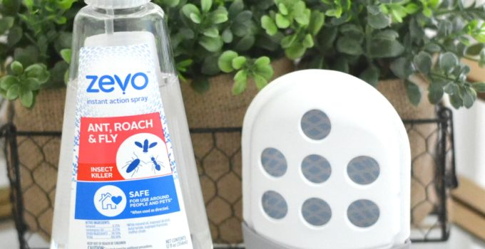 Operation Bug-Be-Gone: Our #1 Spring Cleaning Hack