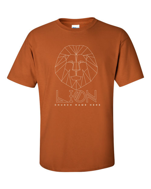 Custom VBS Shirts 2019 In the Wild and Roar themes