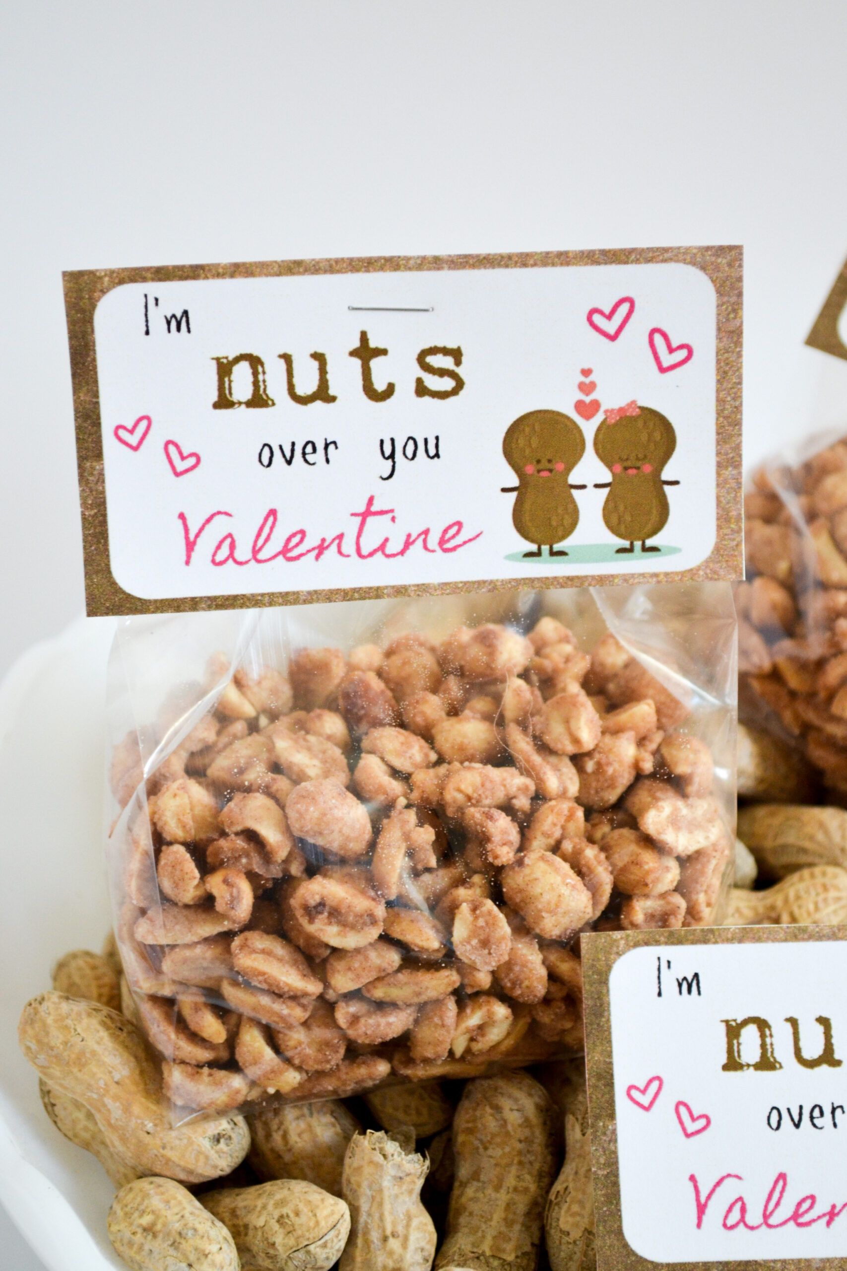 I'm Nuts Over You Valentine Printable